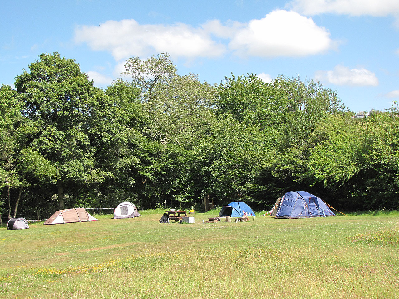 Tents, camping in a field
